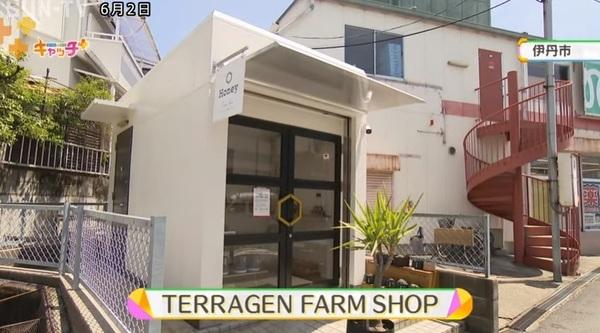 SUN-TV_01.jpg