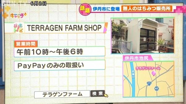 SUN-TV_04.jpg