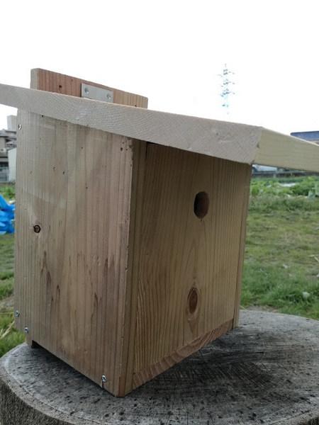birdhouse_08.jpg