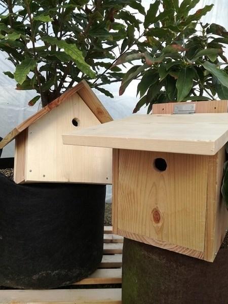 birdhouse_11.jpg