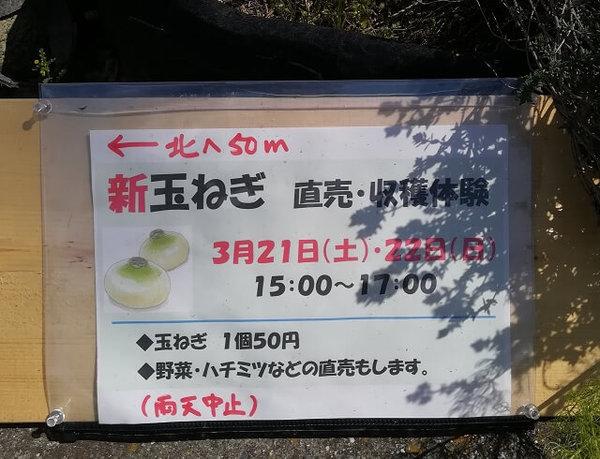 onion_2020_01.jpg