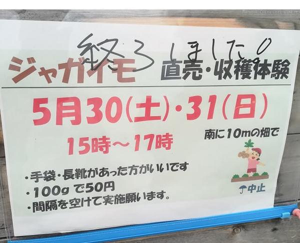 potato_202004.jpg