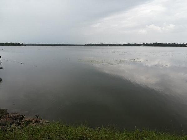 srilanka_rice_04.jpg