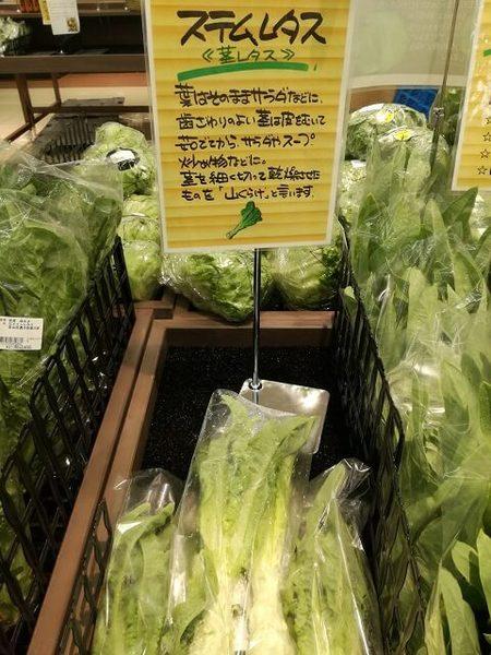 stem_lettuce_06.jpg