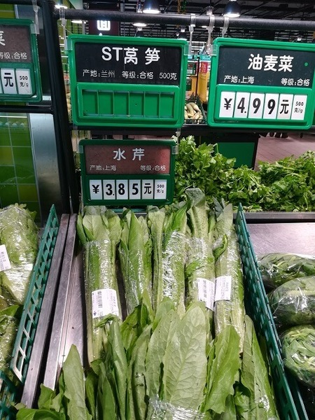stem_lettuce_08.jpg