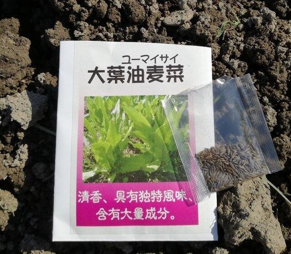 youmaicai_01.jpg